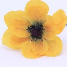 Yellow Vintage Anemone